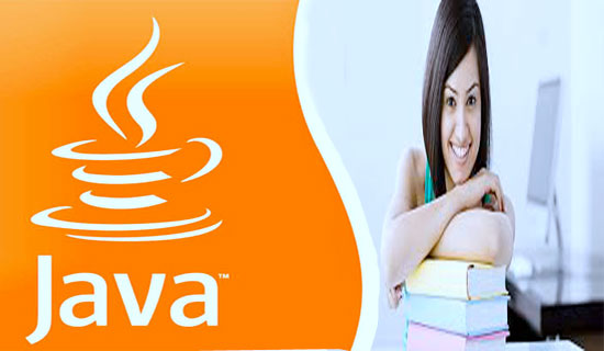 Java course from career planet udaipur