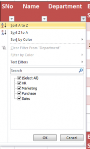 excel filter by text